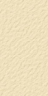 Panou decor Sanotechnik, SanoWall Piatra de Nisip 255x125,5x0,10 cm imagine
