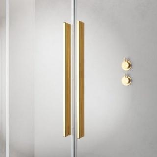 Cabina dus Walk-In Radaway Furo Gold 130xH200 cm, stanga